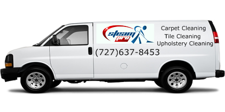 carpet cleaners pinellas park